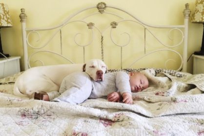 История собаки, которая теперь доверяет только Малышам!