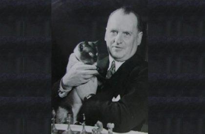 Шахматы и кот великого чемпиона Александра Алехина — таинственная связь